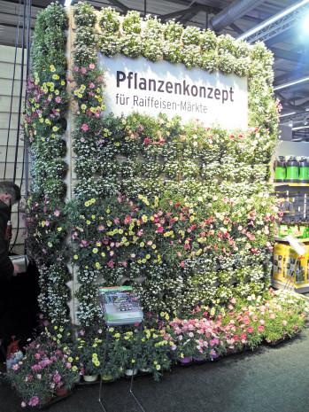 Pflanzenkonzept