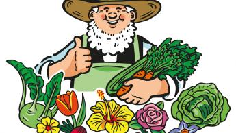 Gärtner Pötschke will sich durch Insolvenzverfahren restrukturieren