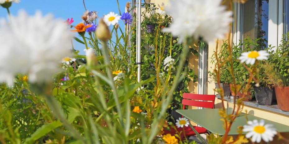 Gardening braucht nicht unbedingt einen Garten. In der Stadt tut's auch der Balkon.
