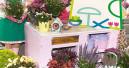 Lifestyle und Garten