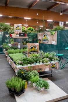 Erstmals präsentierte NBB Egesa Gartencenter ihre Konzepte und Module für die angeschlossenen Gartencenter auf den Herbst-Ordertagen der Landgard.