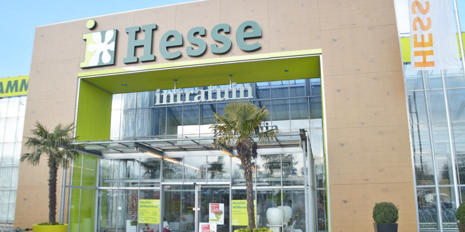 Intratuin Hesse, Außenauftritt