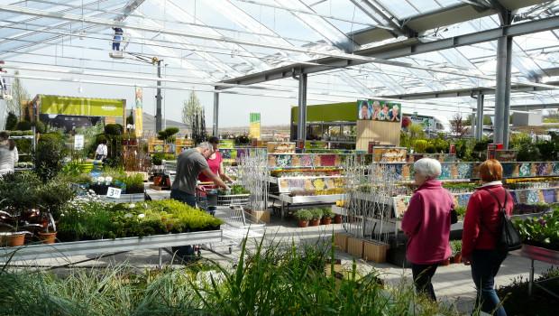 Kunden im Gartencenter