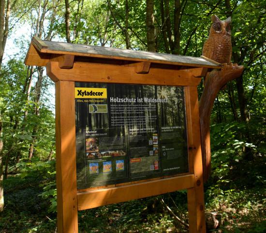 Der Schulungswald in Heidenrod wurde 2013 eingerichtet.