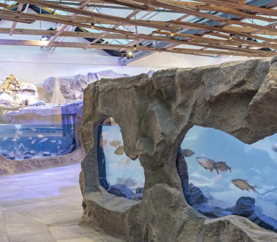 Zwei Aquarien und ein Wasserfall empfangen die Gäste des Gartenbistros.