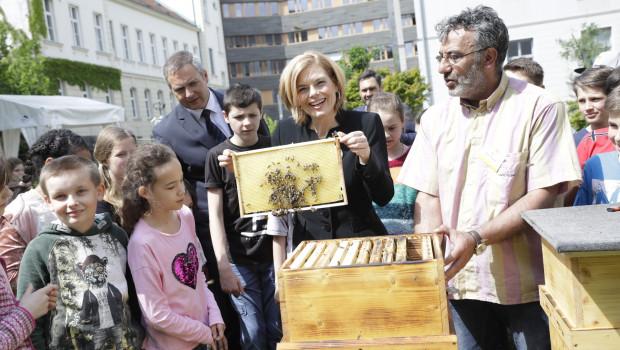 """""""Die Biene ist systemrelevant"""": Bundeslandwirtschaftsministerin Julia Klöckner beim Aktionstag im vergangenen Jahr."""