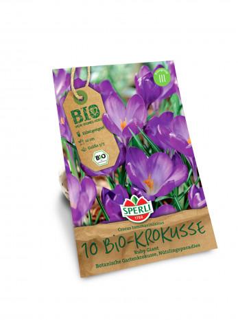 Sperli, Blumenzwiebel, Bio-Sortiment