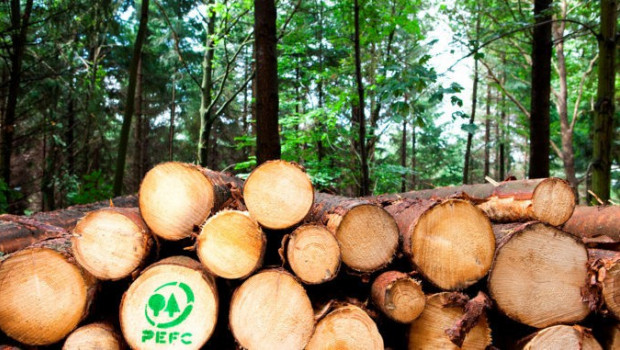 66 Prozent der Waldfläche in Deutschland sind PEFC-zertifiziert.