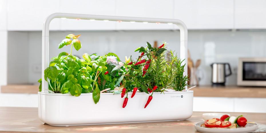 Emsa, Smart Garden Click & Grow