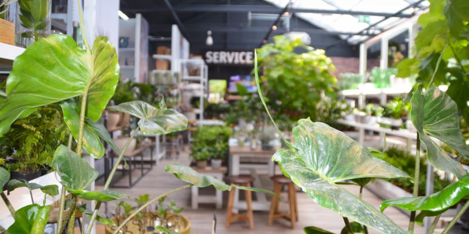 Grünere Wohn- und Lebensräume, Gartencenter