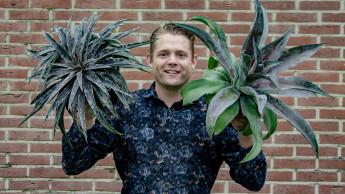Staudenexperte beim Pflanzen-Lizenzbüro Plantipp