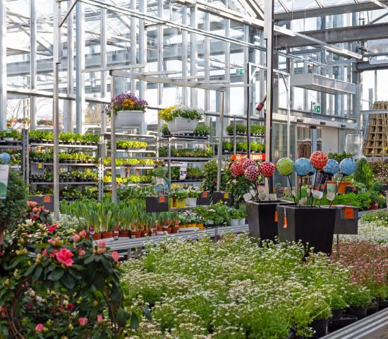 Obi/Sochor, Gartenparadies, Überdachung