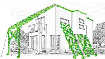 Sonnenschutz aus Pflanzen zum Deutschen Nachhaltigkeitspreis nominiert