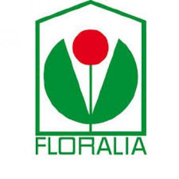 Für die Floralia Gartenbau eG wurde die vorläufige Insolvenzverwaltung angeordnet.