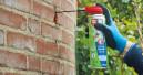 Spezialspray gegen Wespen