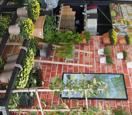 Für das Thema urban gardening hat die Sagaflor einen eigenen Präsentationsvorschlag entwickelt.