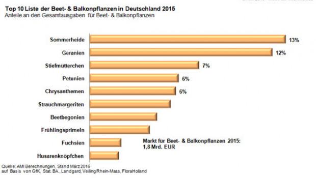AMI: Die Top 10 der Beet- und Balkonpflanzen.
