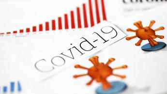 Große Umfrage: Wie meisterten die DIY-Lieferanten Corona?
