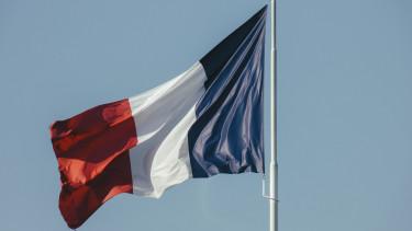 Französische DIY-Umsätze schrumpfen im Mai