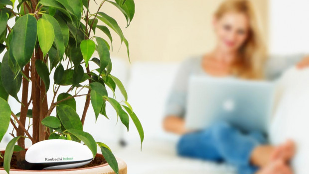 Das von Koubachi entwickelte Pflanzenpflegesystem funktioniert nicht nur innen, ...