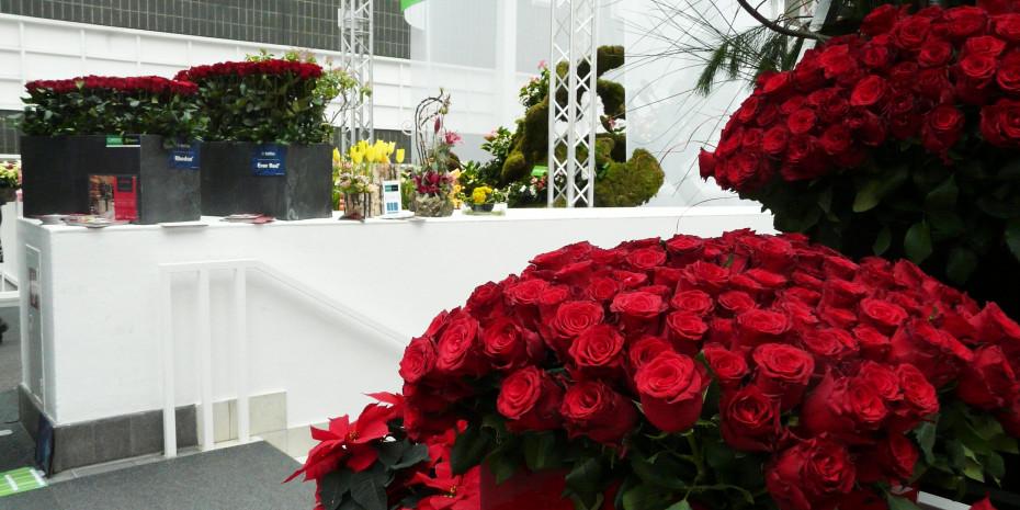 Christmasworld/Floradecora, De Ruiter, 40.000 rote Rosen