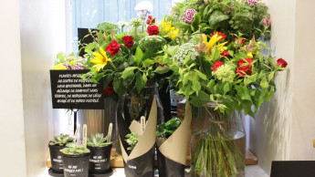 Kosmetikkette Lush verkauft jetzt auch Blumen und Pflanzen