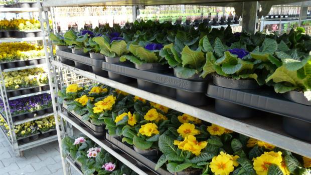 Die Gartensaison startet und damit steigt auch die Nachfrage nach entsprechenden Produkten.