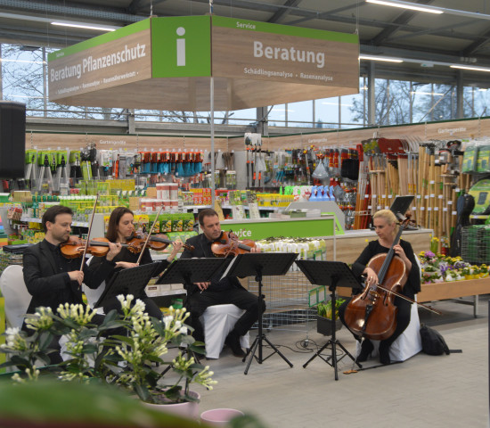 Zur Eröffnungsfeier spielte ein Streichquartett auf - man ist schließlich in Salzburg.