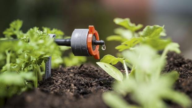Mit seinem Micro-Drip-System steht Gardena im Finale für den Deutschen Nachhaltigkeitspreis.