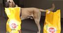 Zookauf und Goodyfriends übergeben Futterspende an Tierschutz Pfotenfreunde NRW