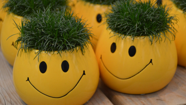 Am Ende dann doch noch ein Lächeln: Laut Destatis ist der Gartenhandel im ersten Halbjahr wenigstens ein kleines bisschen gewachsen.