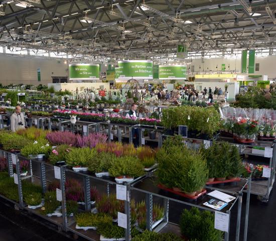 Pflanzeneinkäufer bei Landgard