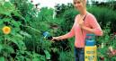 Pflanzenschutz leicht gemacht