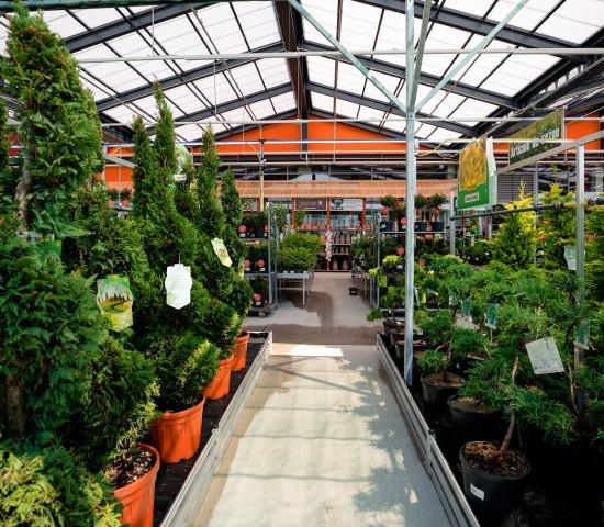 Die Gartenabteilung inklusive...