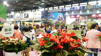 Zehn Prozent mehr Aussteller auf der Hortiflorexpo IPM Shanghai