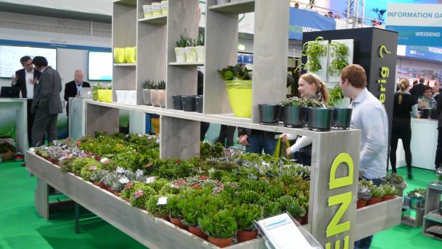Neue Konzepte für das Sortiment Zimmerpflanze waren eines der Themen der Sagaflor auf der Garten- und Zooevent.
