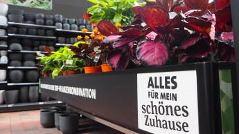 DIY und Blumen sind Wachstumstreiber im Onlinehandel