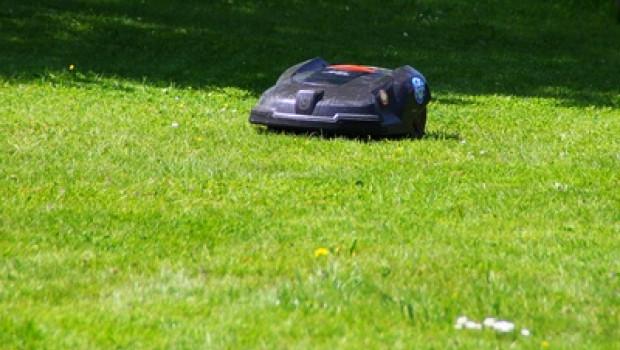 """In der aktuellen Mai-Ausgabe von """"Test"""" standen Rasenroboter auf dem Prüfstand (Bild: Dirscherl, Pixelio)."""