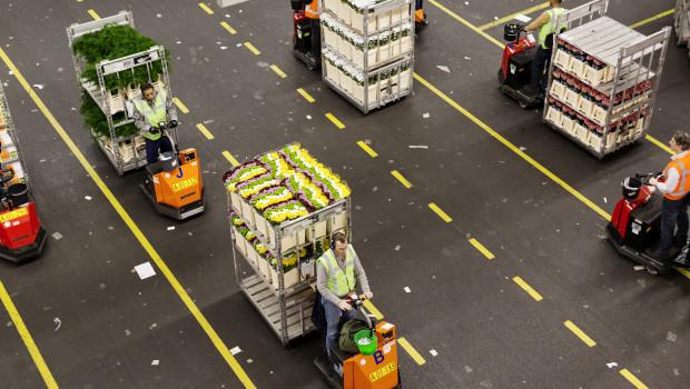 Flora-Holland will 2017 unter anderem gezielt in die Logistik investieren.