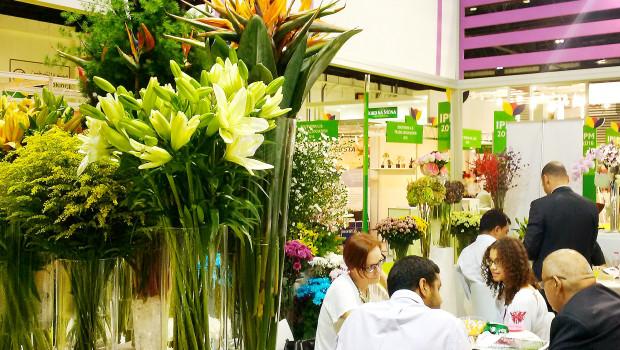 Die IPM Dubai ist die einzige Messe innerhalb der Golfregion mit einem Sortimentsspektrum, das Pflanzen, Technik, Floristik, Gartenausstattung, Logistik, Pflanzenpflege sowie Garten- und Landschaftsbau umfasst.