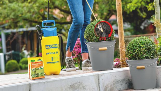 Pflanzenschutzmittel sollten immer auch an der Blattunterseite ausgebracht werden, empfehlen Neudorff und Gloria.