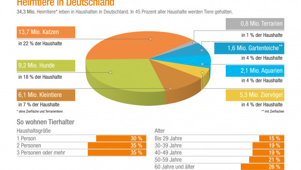 Katzen und Hunde sind die beliebtesten Heimtiere in Deutschland, wie aus der Statistik für 2017 von ZZF und IVH hervorgeht.