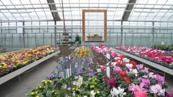 Einzelhandelsöffnung in Baden-Württemberg bereits vor 3. März möglich