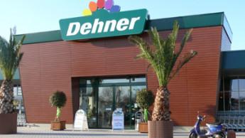 Dehners Neuauftritt in Heidelberg