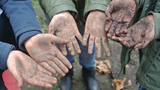 Fleißige Hände: In der Gemüse-Ackerdemie lernen Schüler ganz praktisch, wie natürliche Lebensmittelproduktion funktioniert.