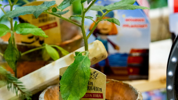 Auch Wickie hilft beim Pflanzenverkauf: Die Landgard hat ein Lizenz-Konzept mit dem kleinen Wikinger im Angebot.
