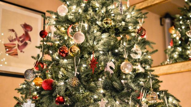 Zu Weihnachten gehört er für zwei Drittel in die Wohnung: der Weihnachtsbaum. Bild: Pixabay/Free-Photos