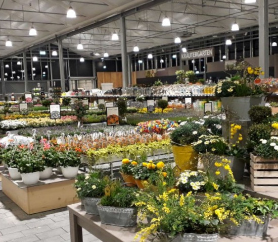 Der Familienbetrieb beeindruckt mit einem großen Angebot an Pflanzen.