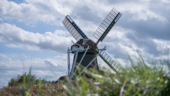 Minus 24 Prozent im niederländischen DIY-Handel gegenüber 2020