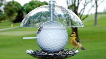 Birdpods für Vögel